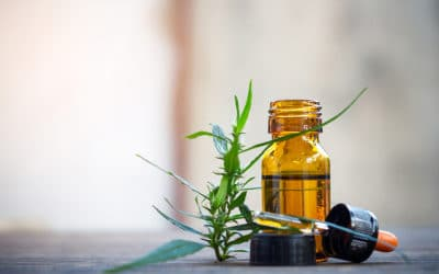 Cannabis Oil Benefits